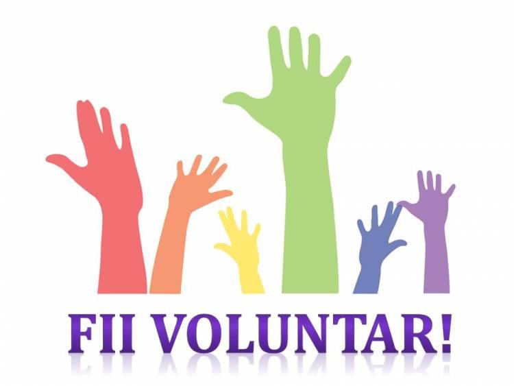 Campanie de voluntariat