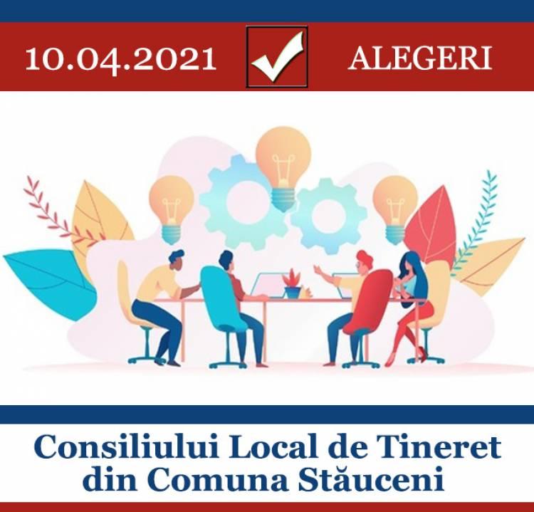 Alegerile Consiliului de Tineret din Comuna Stăuceni